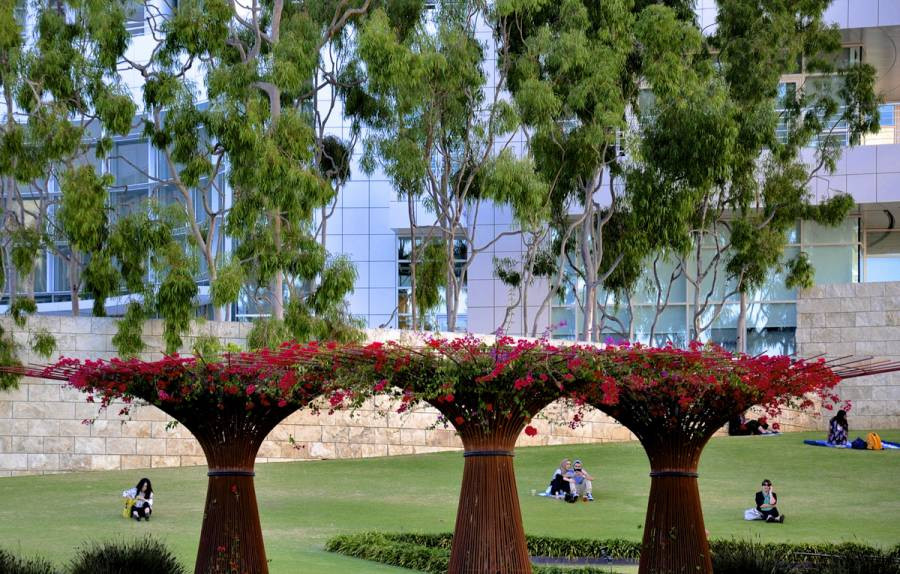 Robert irwin's garden design at the Getty Center in Los Angeles 0990