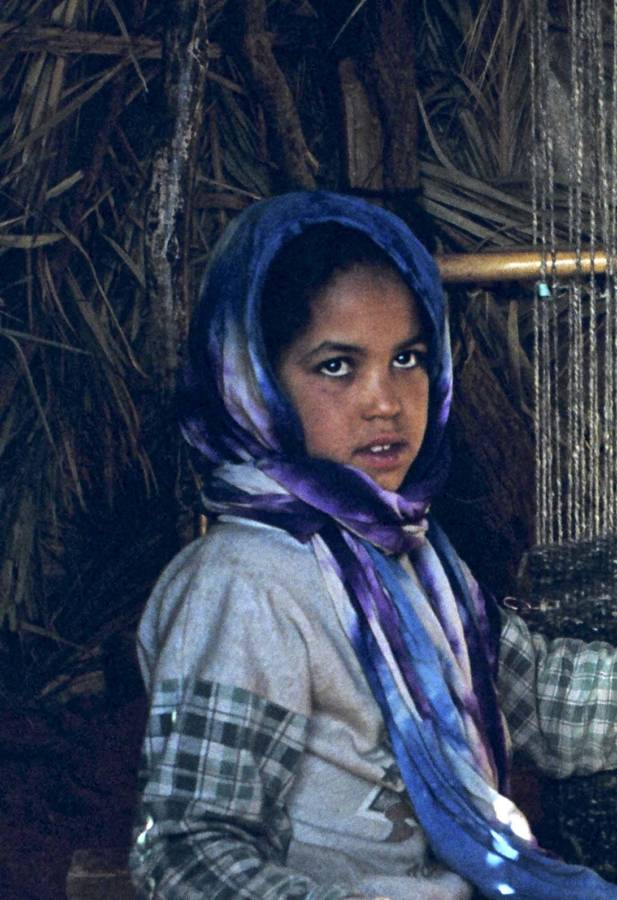 Berber Girl In Moroccan Desert