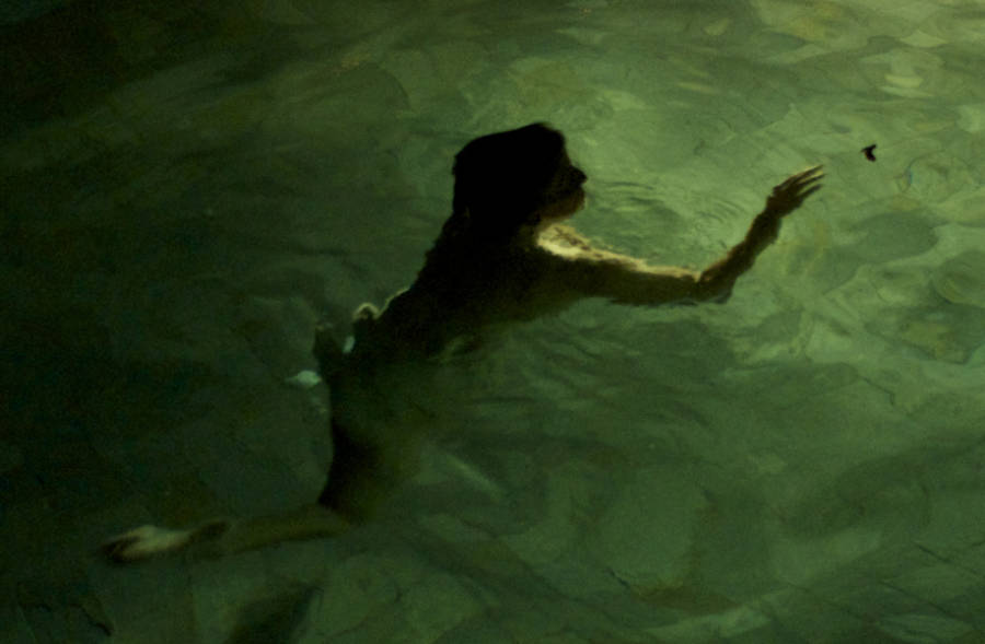 The Sea In Which We Blindly Swim